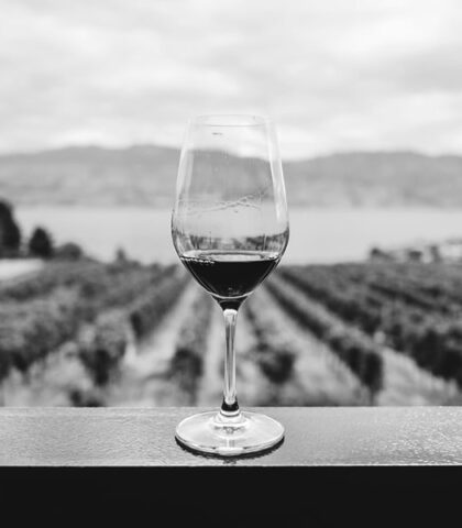 Getting Acquainted with Tuscan Wines – A Guide for Beginners!